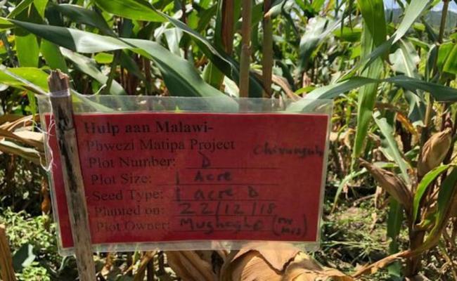 Landbouw- en irrigatieproject in Pwezi